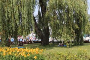 Park Bajka3 _atrakcje dla dzici okolice Warszawy_rodzinnykompas.pl