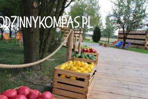 Baśniowe Sady Klemensa 2_atrakcje dla dzieci okolice Warszawy_rodzinnykompas.pl