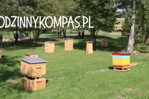 Baśniowe Sady Klemensa 29_atrakcje dla dzieci okolice Warszawy_rodzinnykompas.pl