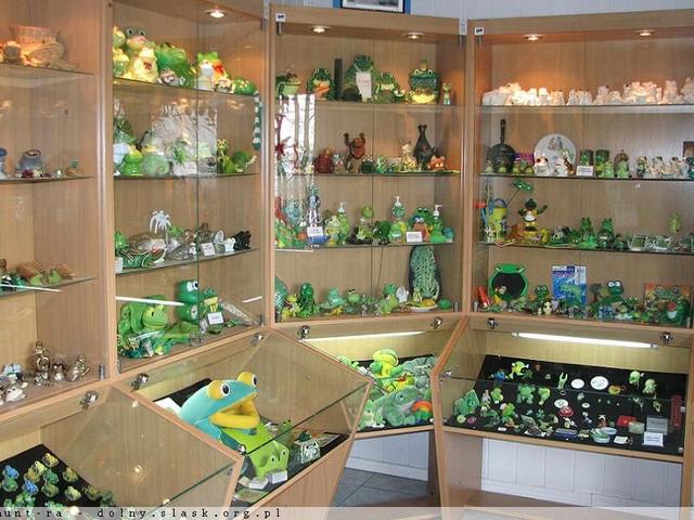 Muzeum Żaby - ziemia kłodzka z dzieckiem - kotlina kłodzka z dzieckiem - Rodzinny Kompas