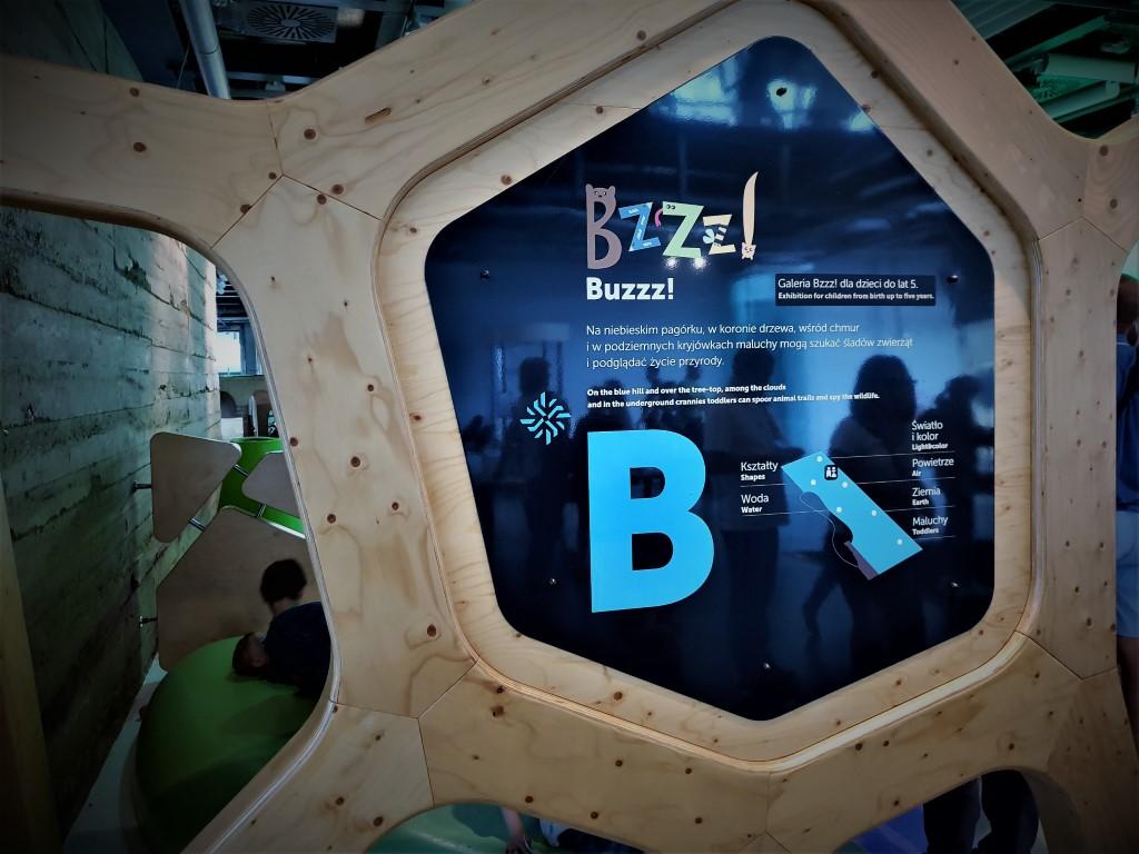 Galeria Bzzz - atrakcje dla dzieci Warszawa - Centrum Nauki Kopernik - Rodzinny Kompas 16