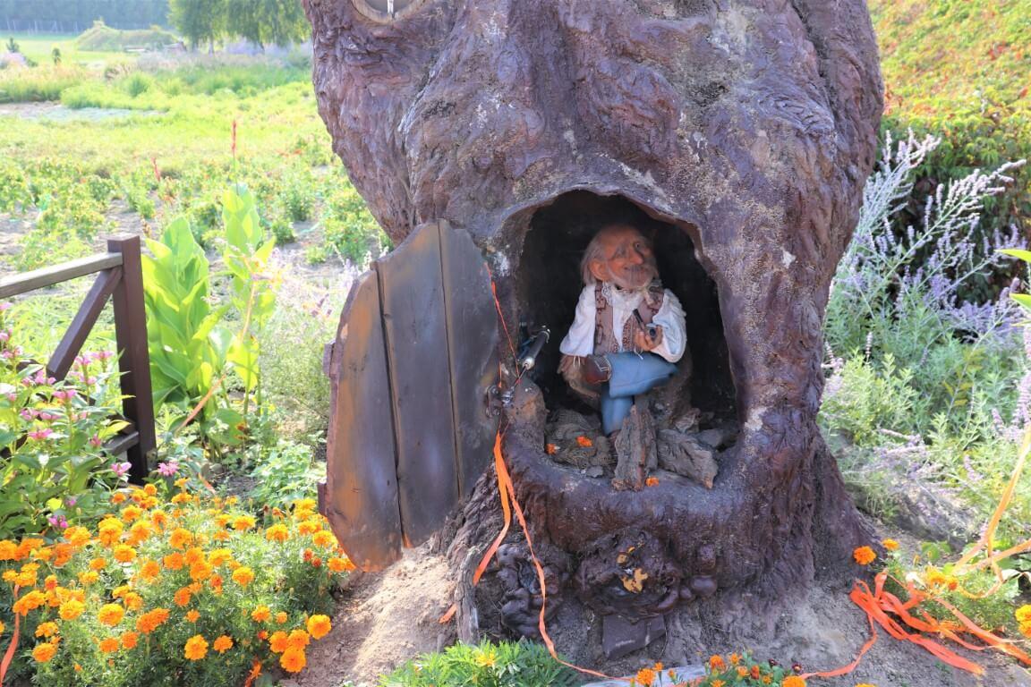 Magiczne Ogrody - atrakcje dla dzieci - park rozrywki - Rodzinny Kompas 6
