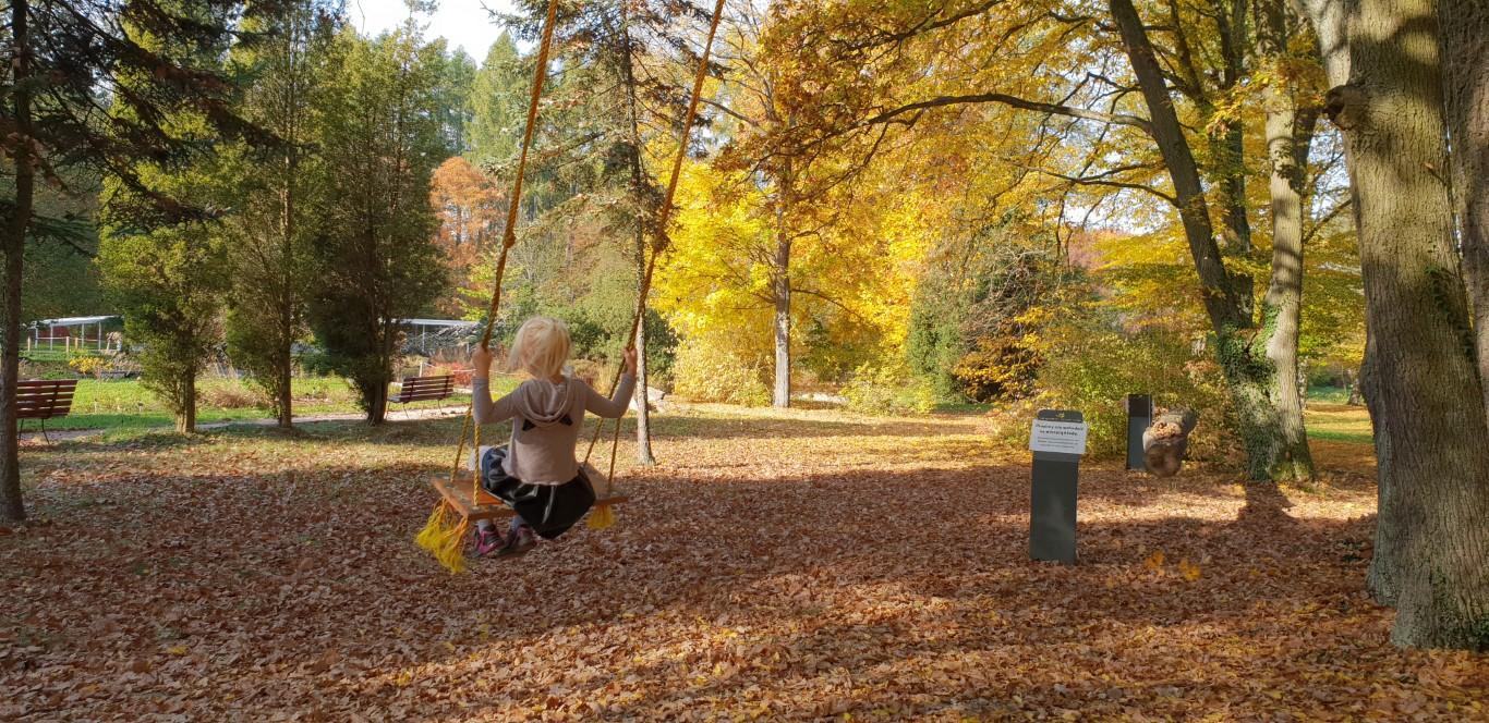 Arboretum w Rogowie - atrakcje dla dzieci okolice Warszawy - Rodzinny Kompas 10