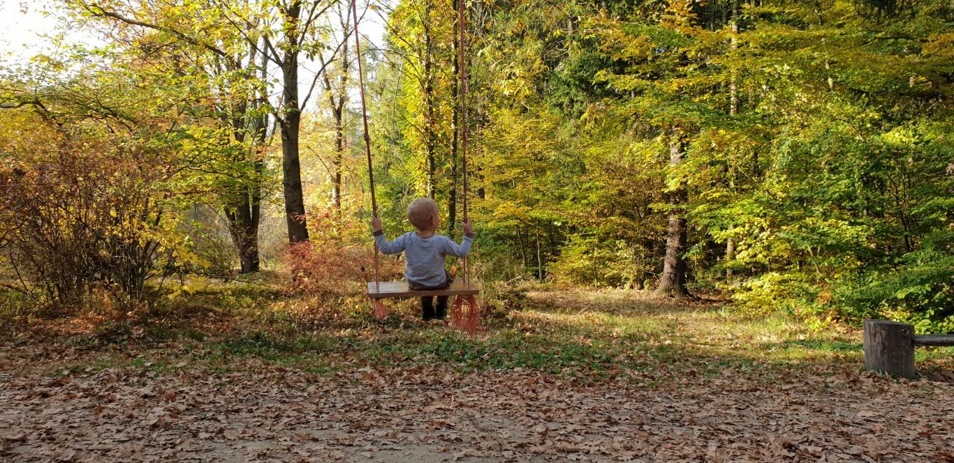 Arboretum w Rogowie - atrakcje dla dzieci okolice Warszawy - Rodzinny Kompas 11