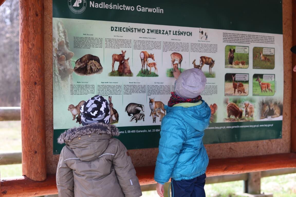 Leśne ZOO Cyganówka - atrakcje dla dzieci okolice Warszawy - Rodzinny Kompas 14