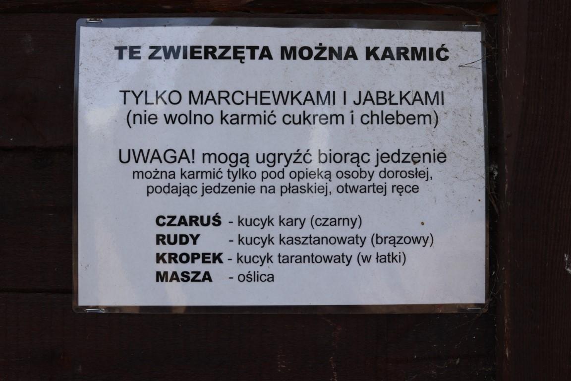 Willa Wilga - mini ZOO - atrakcje dla dzieci okolice Warszawy - atrakcje okolice Garwolina - Rodzinny Kompas 15