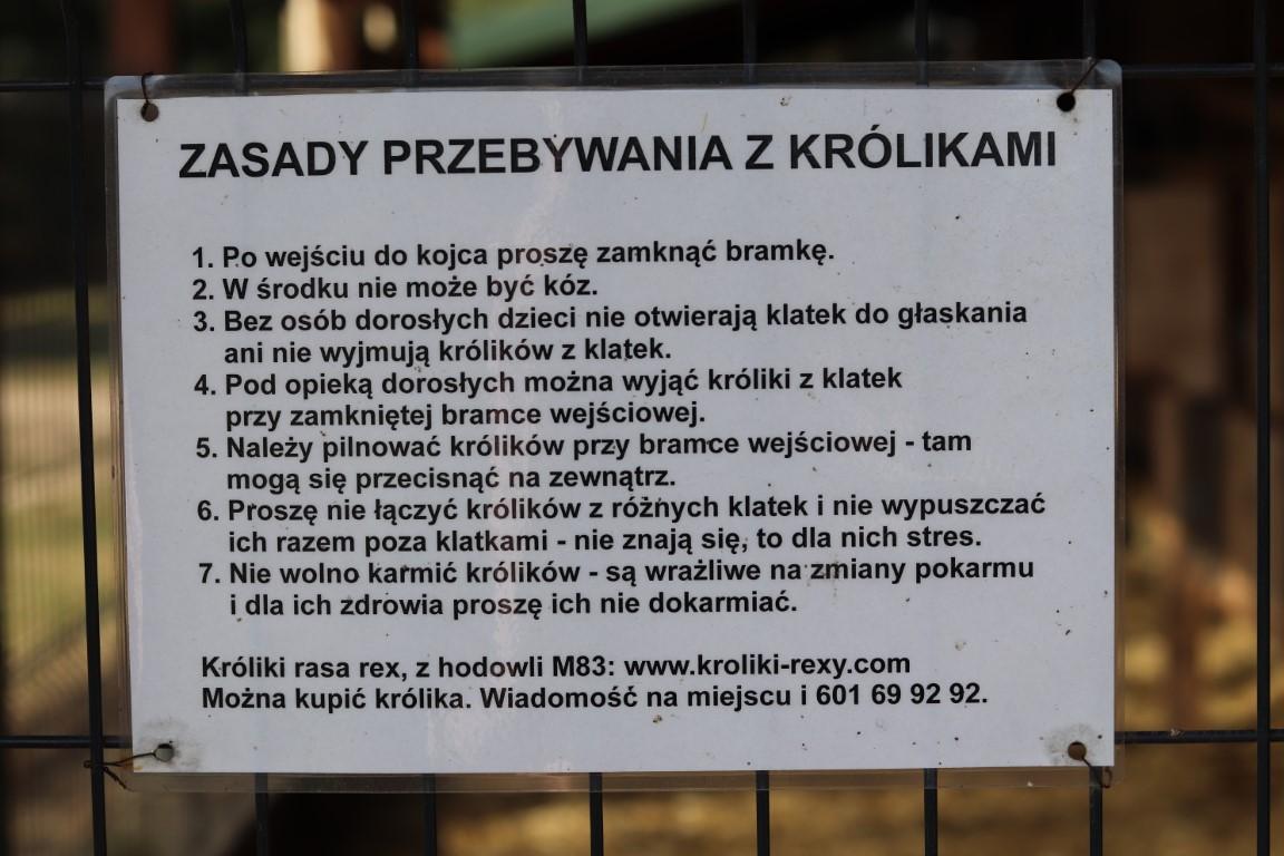 Willa Wilga - mini ZOO - atrakcje dla dzieci okolice Warszawy - atrakcje okolice Garwolina - Rodzinny Kompas 14
