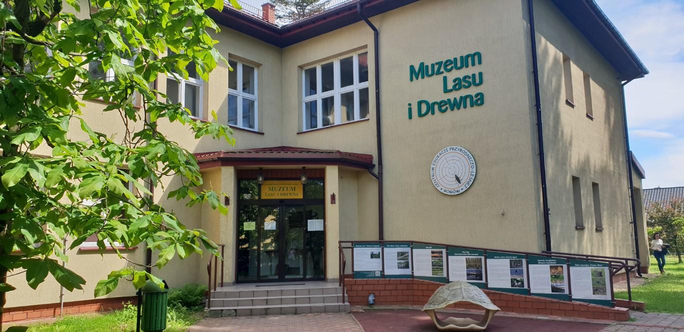 Arboretum w Rogowie - atrakcje dla dzieci okolice Łodzi - Rodzinny Kompas 17