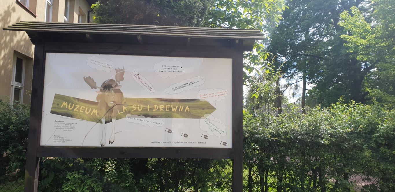 Arboretum w Rogowie - atrakcje dla dzieci okolice Łodzi - Rodzinny Kompas 18
