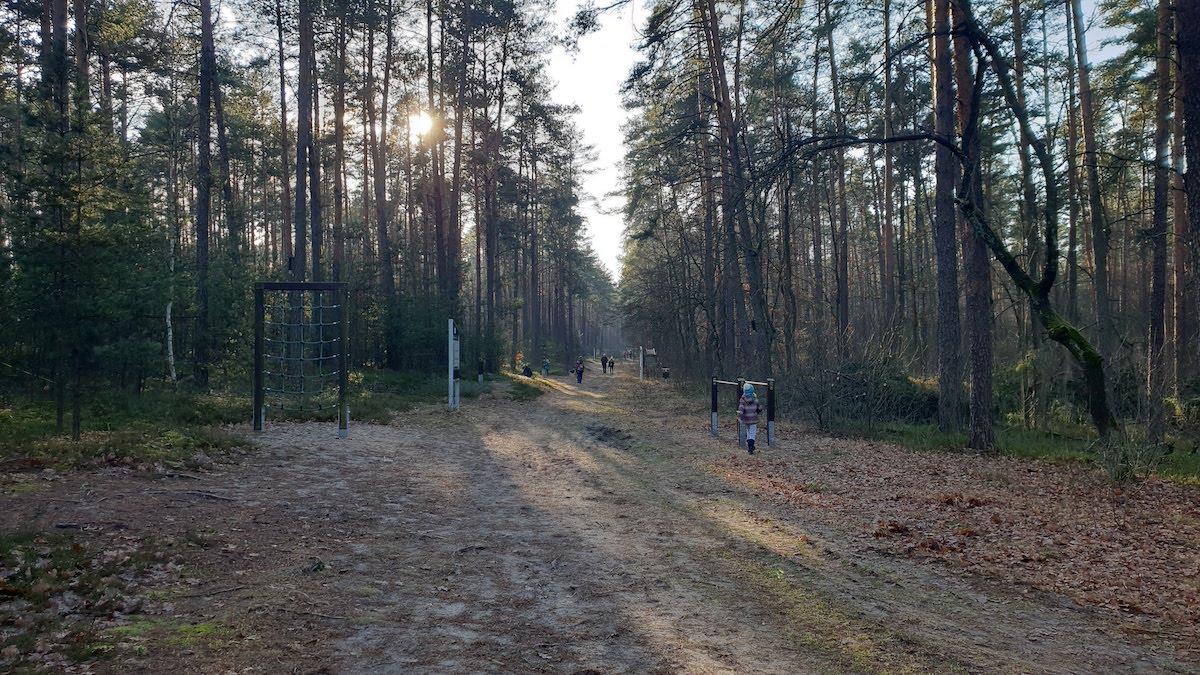 Goździkowe Bagno - miejsce na rodzinny spacer - pomysł na weekend - Rodzinny Kompas 14