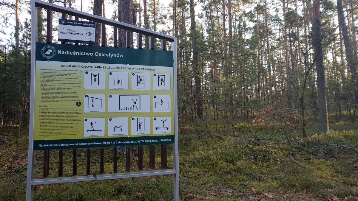 Goździkowe Bagno - miejsce na rodzinny spacer - pomysł na weekend - Rodzinny Kompas 10