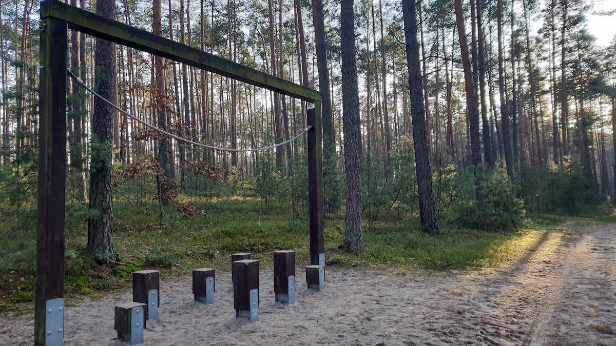Goździkowe Bagno - miejsce na rodzinny spacer - pomysł na weekend - Rodzinny Kompas 13