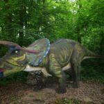 DinoPark - atrakcje dla dzieci Malbork - Rodzinny Kompas 5
