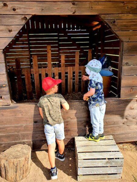 Dynioland - atrakcja dla dzieci okolice Warszawy - dynie - Rodzinny Kompas 4